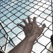 Need freedom with hand in jail — Stock Photo #59034517