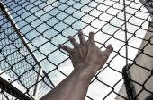 Need freedom with hand in jail — Stock Photo