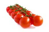 Cherry tomatoes on a stalk. — Stock Photo