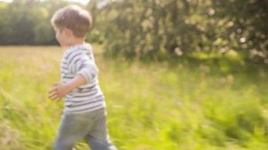 Little boy having fun with confetti in park — Stock Video