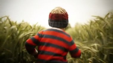 Young Boy Running Through Wheat Field — Stock Video