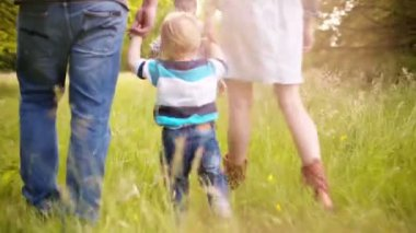 Kids exploring Park with parents — Stock Video