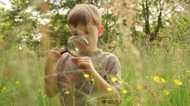 Boy Inspecting Flower with Magnifying Glass — Stock Video