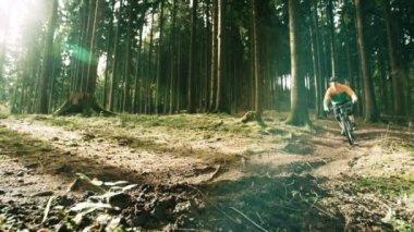 Downhill biker in the forest — Vídeo de stock
