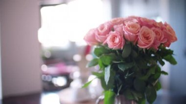 Pink roses in a vase — Stock Video