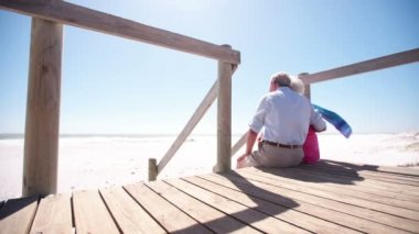Elderly couple sitting together at the beach — Stock Video