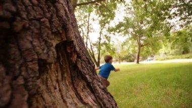 Kleiner junge im park ausgeführt — Stockvideo