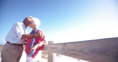 Loving retired senior couple together at the beach — Stock Video