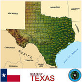 Texas counties emblem map — Stock Vector