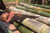 Close-up of handyman using saw . — 图库照片