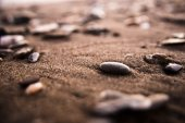 Stones at the beach — Stock Photo
