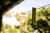Single clothes peg — Stock Photo