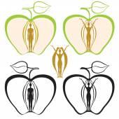 Jabłko — Wektor stockowy