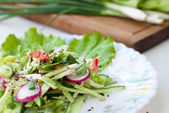 Delicious salad of cucumber and radish with lettuce — Stock Photo