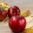 Red fresh apples — Stock Photo #55483905