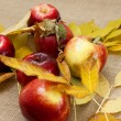 Red fresh apples — Stock Photo #55484147