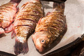 More fresh carp on a baking before baking closeup. river fish — Stock Photo