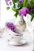 Bouquet of lilac flower — Stock Photo