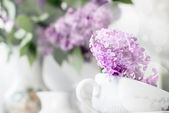 Sprig of lilac in a cup — Stock Photo