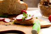 Sandwich with chicken liver pate and radishes — Stock Photo
