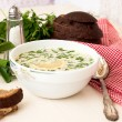Hash - a traditional Russian cold soup — Stock Photo #73057085