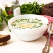 Hash - a traditional Russian cold soup — Stock Photo #73057513