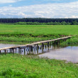 Wooden bridge over river in green field near forest — Stock Photo #53445149