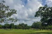 Golf course in Dominican republic. field of grass and coconut palms on Seychelles island. — Stock fotografie