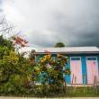 Poor woden cabins at Dominican Republic, island Hispanola wich is a part of Greater Antilles archipelago in Carribean region — Stock Photo #71047503