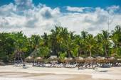 Relaxing on remote Tropical Paradise beach in Dominican Republic, Seychelles, Caribbean, Mauritius, Philippines, Bahamas. — Stockfoto