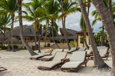 Palm and tropical beach in Tropical Paradise. Summertime holiday in Dominican Republic, Seychelles, Caribbean, Philippines, Bahamas. Relaxing on remote Paradise beach. Luxury Resort on Atlantic ocean. — Stock Photo