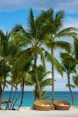 Piscine lit à la piscine bleue dans le paradis tropical. république dominicaine, seychelles, des caraïbes, maurice, philippines, bahamas. détente sur la télécommande plage paradisiaque. — Photo