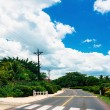 Nice asfalt road with palm trees against the blue sky and cloud — Stock Photo #71733579