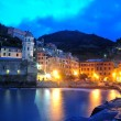Aerial view of Vernazza - small italian town in the province of La Spezia, Liguria, northwestern Italy. — Stock Photo #71741055