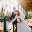 The bride and groom hugging on shore of Lake in a park. Wedding by the sea. Honeymoon. — Stock Photo #72201125