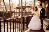 The bride and groom hugging on shore of Lake in a park. Wedding by the sea. Honeymoon. — Stock Photo