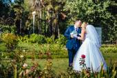Bride and Groom at wedding Day walking Outdoors on spring nature. Bridal couple, Happy Newlyweds embracing in green park. — Stock Photo