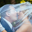 Bride And Groom Kissing Under Veil Holding Flower Bouquet In Hand. — Stock Photo #72470007