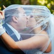 Bride And Groom Kissing Under Veil Holding Flower Bouquet In Hand. — Stock Photo #72470145