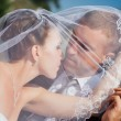 Bride And Groom Kissing Under Veil Holding Flower Bouquet In Hand — Stock Photo #72793127