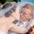 Bride And Groom Kissing Under Veil Holding Flower Bouquet In Hand — Stock Photo #72793149