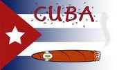 Cuban Cigar — Stock Vector