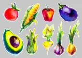 Watercolor vegetables set — Stock Vector