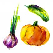 Artistic watercolor vegetables — Stock Vector