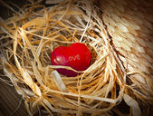 Red heart on hay — Stock Photo