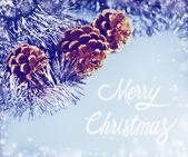 рождественские украшения фона — Стоковое фото