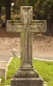 One cemetery cross — Stock Photo