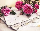 Rosa rosor, kronblad och handgjort papper — Stockfoto