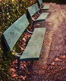 Green wooden benches in park — Stock Photo