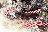 Christmas candies in box — Stockfoto